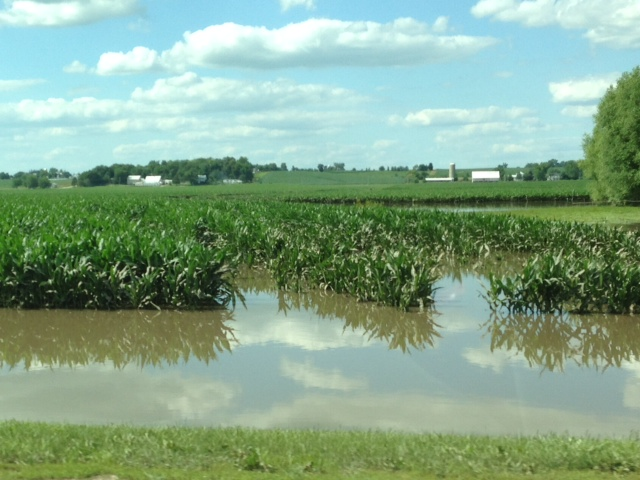 It seems that we go from drought to flood in the matter of weeks in Iowa